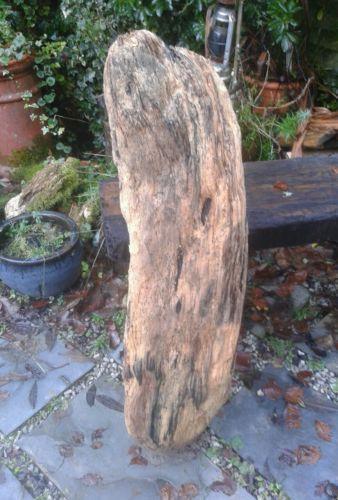 Driftwood Sculpture Home Decor Ebay