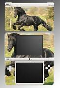 Nintendo DS Horse Games