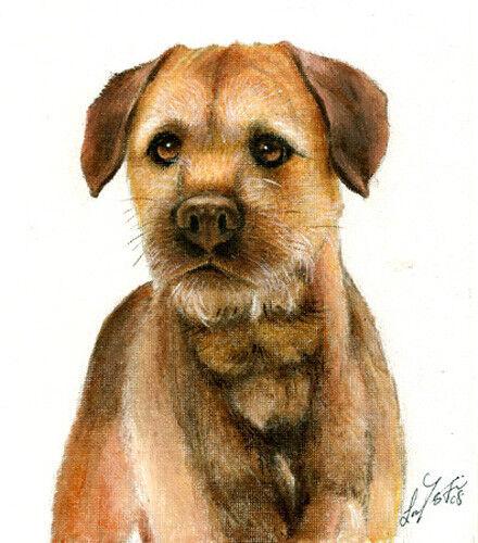 Original Oil DOG Portrait Painting BORDER TERRIER Art Artwork Puppy Signed