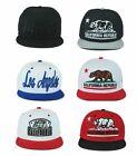 California Men's Flat Caps