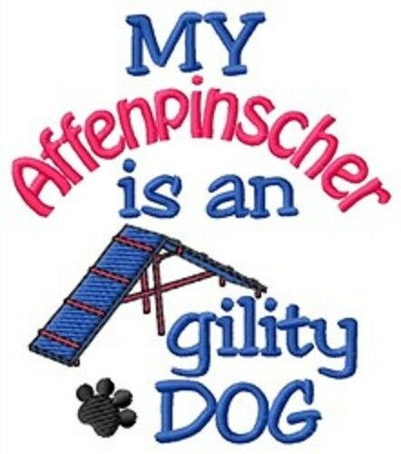 My Affenpinscher is An Agility Dog Sweatshirt - DC1992L Size S - XXL