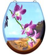 WC Sitz Orchidee
