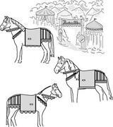 Equestrian Costume