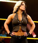 WWE Diva Kaitlyn Wrestling Photos