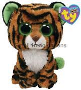 Tiger Teddy