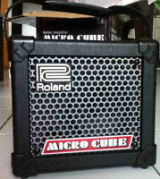 Portable P.A / GUITAR AMP, uses 6aa's batt's or a/c adapter.