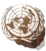 United Nations Badge