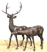 Life Size Deer