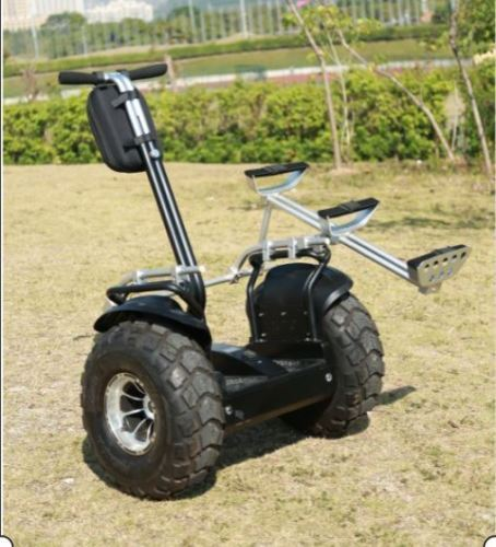 Angelol 4000w/84v Off Road 19in. Electric Self Balance Golf Cart Vehicle