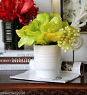 Unbranded Amaryllis Bunches Décor