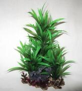 Aquarium Deko Pflanzen
