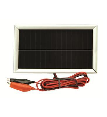 American Hunter Economy 12V Solar Trickle Charger for Deer Feeder New (12 Volt Solar Charger For Deer Feeder)