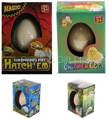 New Hatching & Growing DINOSAUR/CHICKEN EGG Toy Gift Children Kids