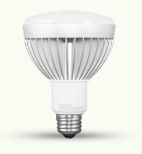 R30 Led Dimmable Ebay