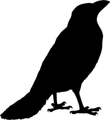 Large Crow Silhouette Vinyl Sticker Decal Car Bumper Laptop Window Wall ()