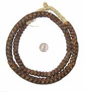 Snake Vertebrae