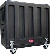 SKB Amp Case