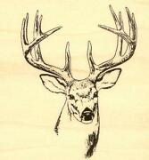 Wildlife Rubber Stamps