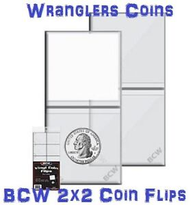100-HEAVY-DUTY-2-x-2-BCW-VINYL-DOUBLE-POCKET-COIN-FLIPS-WITH-PAPER-INSERTS-NEW