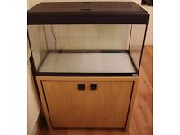 Fluval Roma 125 Fish Tank with stand in Oak