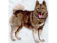 Clover Garden Flag Norwegian Elkhound 314031