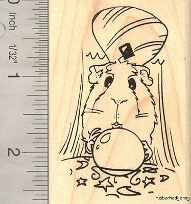Guinea Pig with Crystal Ball, Fortune Teller, Magic  J16304 WM Halloween Costume ()