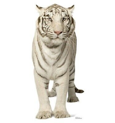 front view WHITE TIGER STANDEE * animal standups * circus theme party * jungle  (Circus Theme)
