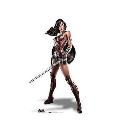 Superman Life Size Cut Out (Dc Wonder Woman Batman Vs Superman Life Size Standup Cardboard Cutout)