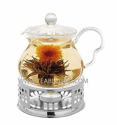 Blooming Tea Glass Teapot Set Fairy, 20oz/590ml with Stainless Steel Tea Warmer,