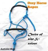 Mini Horse Halter