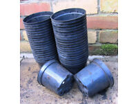 1.5 liter plant pots used
