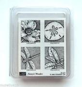 Stampin Up Natures Wonders