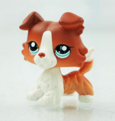 "2""Brown White Collie Dog Blue Eyes Kids Toys  Puppy Littlest Pet Shop LPS#1542"