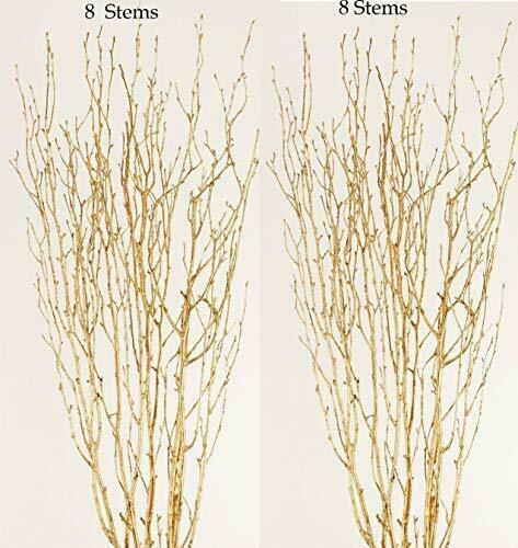 Gold Birch Branches, Pack of 16, 2-2.5 FT Ballroom Gold Branch Tips