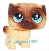 Littlest Pet Shop Pug