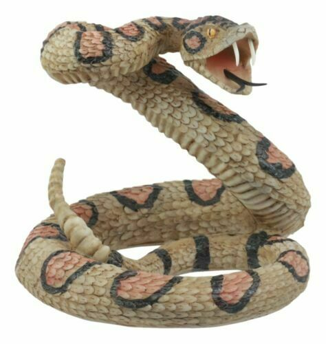 "Realistic Diamondback Rattlesnake 6""H Figurine Snake Taxidermy"