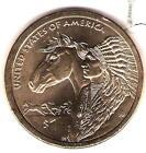 2012 Native American Coin