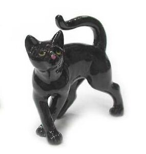 R314E - Northern Rose Miniature- Black Kitten