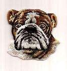 Bulldog Patch
