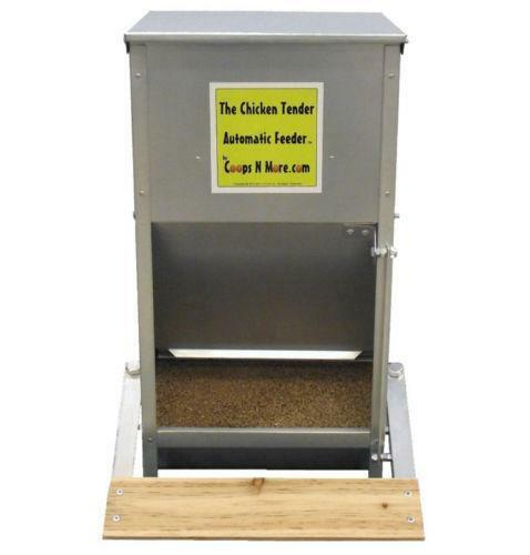 Best Automatic Large Dog Feeder