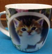 Cat Cups Mugs