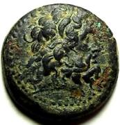 Cyprus Ancient Coins