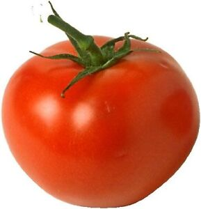 500 BEEFSTEAK TOMATO Vegetable Seeds + Gift & Comb S/H