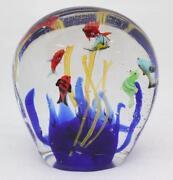 Large Glass Fish