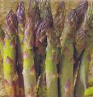 Asparagus Vegetable Plant Seeds