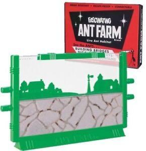 Original Uncle Milton's ANT FARM Live Habitat Insect Bug Colony School FREE ANTS
