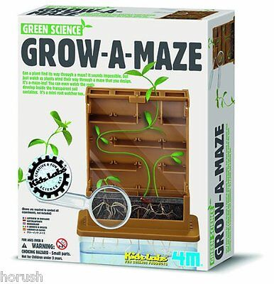 4M 68251 - Green Science - Grow-a-maze  NEU Ovp.
