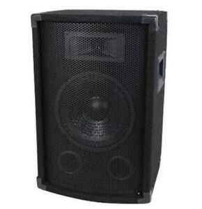 12'' Two Way PA / DJ Speaker 500W