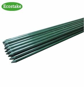 50x EcoStake Plant/Garden /Tomato/Training Stakes 5FT 1/4-Inch Green Never Rust