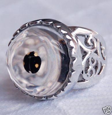 Ladybug White Ring (Real ladybug in resin ring white gold plated)